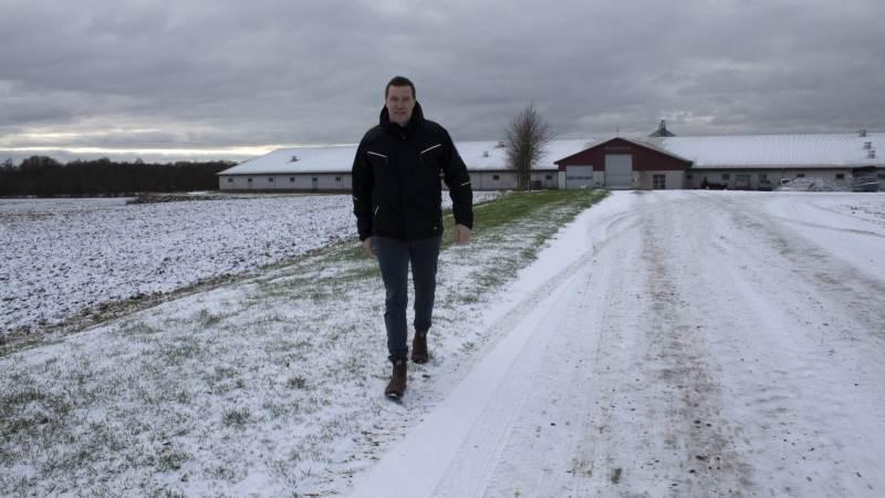 Søren Søndergaard, der her ses på sin bedrift Baldershave ved Billund, fortæller, at hans største bekymring lige nu er den kommende Vandmiljøplan III. Foto: Morten Ipsen