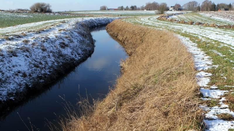 Det er her i åen, at landmænd i Holbæk Ålav er utilfredse med, at der efter oprensning er blevet placeret store sten på bunden.