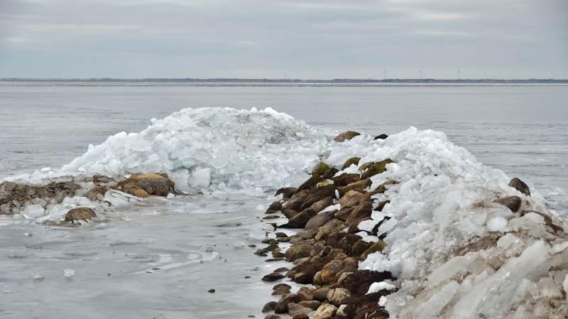 En ny analyse fra Seges viser, at man i oplandet til Ringkøbing Fjord skal braklægge 20 procent af arealet og bruge 20 procent mindre kvælstof på resterende arealer for, at man kan nå det indsatsbehov, som man fandt nødvendigt forud for de seneste vandområdeplaner. Foto: Colourbox