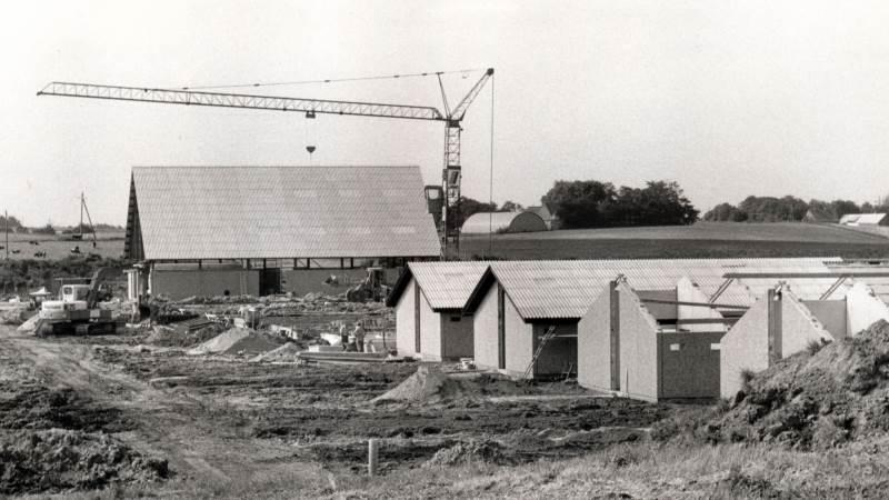 Bøgildgård blev etableret ved Oustruplund lidt uden for Kjellerup i 1981 af De samvirkende danske Andelsslagteriers Fælleskontor. Foto: Hanne Juul
