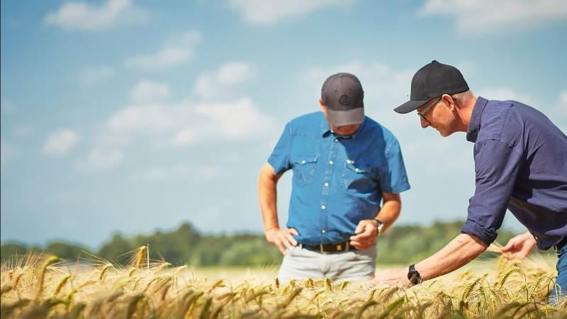 Farmbrella vil være den førende digitale platform til vidensdeling, netværk og rekruttering i agrosektoren.
