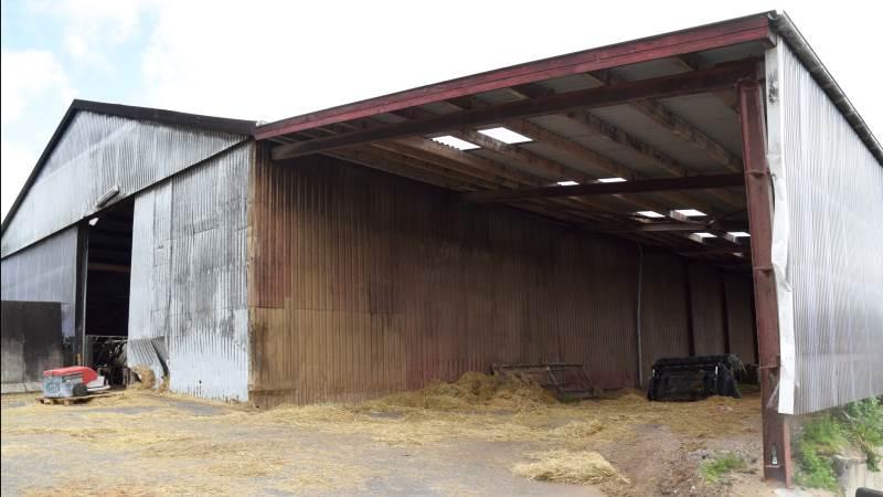 I dag bliver de nødlidende ejendomme ifølge Allan Madsen i stor stil solgt til økonomisk stærke landmænd. Det er en udvikling, der næppe stopper i de kommende år - tværtimod, vurderer han. Fotoet her er taget i en anden sammenhæng. Arkivfoto: Morten Ipsen