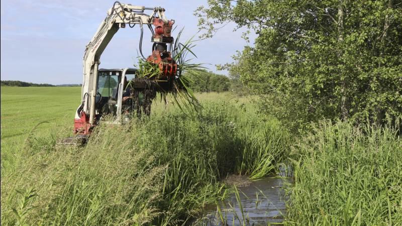 Struer-landmanden Bjarne Christensen er blevet frikendt i en sag om oprensning af vandløb. Arkivfoto