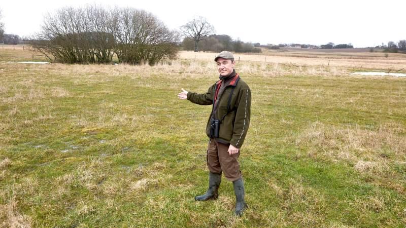 Et perfekt område for viber, påpeger naturkonsulent Peter Pelle: Vådt engområde med lavt græs og uden landbrugsaktiviteter. Foto: Erik Hansen