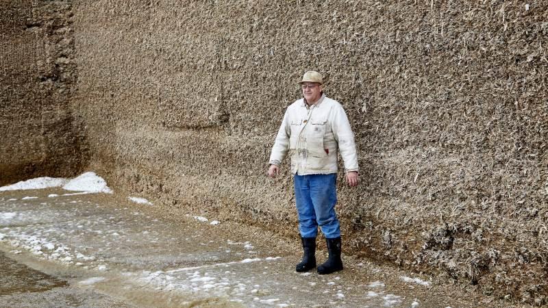 Problemet med lugtende majsensilage kan sagtens opstå efter at man har brugt af ensilagen i lang tid. Det kan komme snigende i løbet af de næste måneder, siger Ejvin Kortegaard, som er afdelingsleder i kvægafdelingen hos Sagro.