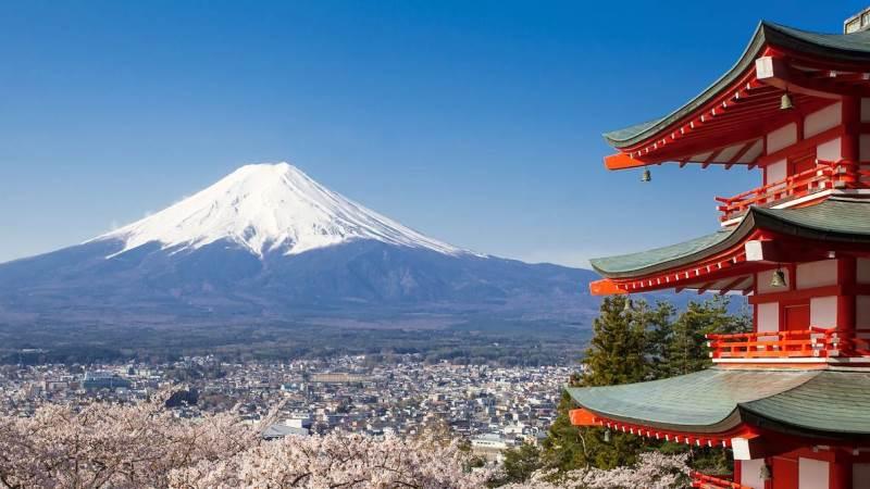 På studieturen til Japan skal der primært besøges landbrug og ses på afsætning af danske landbrugsprodukter. Men den japanske kultur, som både er meget traditionel og meget nytænkende, skal også opleves.