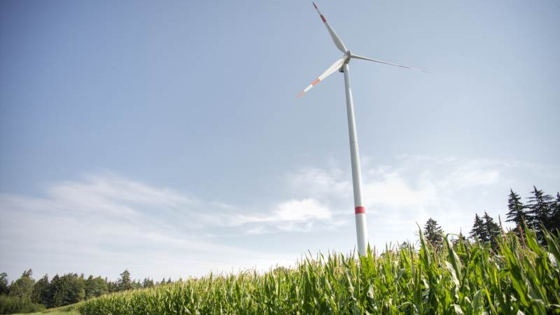 En CO2-afgift på landbruget kræver viden om, hvad den enkelte bedrift udleder, hvis den skal virke i praksis, mener eksperter.