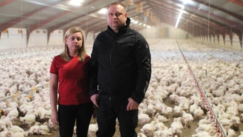 Oleksandr og Tanja Abrieiev er kommet godt fra start med kyllingeproduktionen i Gedsted. Fotos: Christian Carus