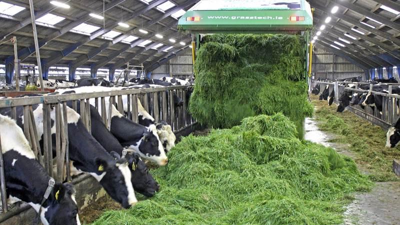 Norfor-værdierne for frisk græs og ensilage viser, at AAT i frisk græs typisk ligger i niveauet 85-90 mod 75-80 i ensilage med samme fordøjelighed og indhold af protein.