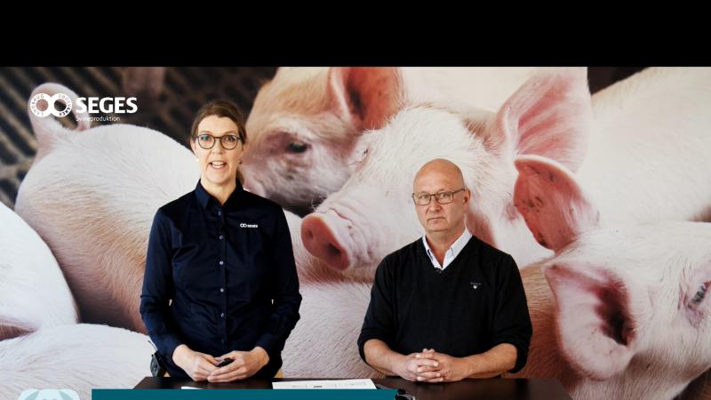 Chefforsker hos Seges Svineproduktion, Charlotte Sonne, og professor Lars E. Larsen fra Københavns Universitet gav under tirsdagens So-seminar et indblik i håndtering af virus. Foto: Camilla Bønløkke