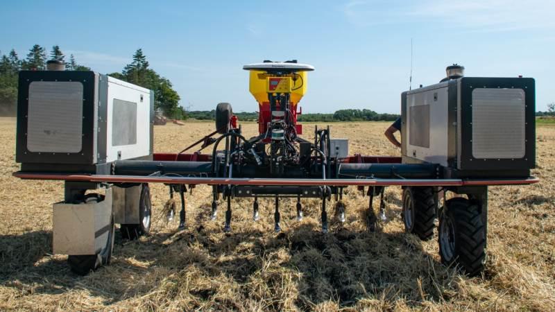 Maskiner som Robotti fra Agrointelli bliver nu efterspurgt mere og mere i USA i takt med, at hårde arbejdstider og manglende personale på en række gårde tvinger amerikanske producenter til at tænke i robotter. Foto: Daniel Barber