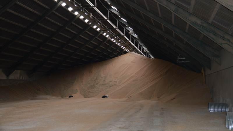 Konsulentbureauet Strategie Grains opskriver nu sit estimat for den samlede europæiske og britiske eksport af hvede for sæsonen 2020 og 2021.
