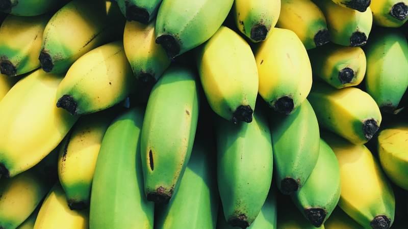 I den ugandiske startup Texfad bliver restprodukter fra bananproduktionen brugt til at spinde tekstiler, der blandt andet bruges i tæpper og i hårforlængelser. Foto: Pixabay