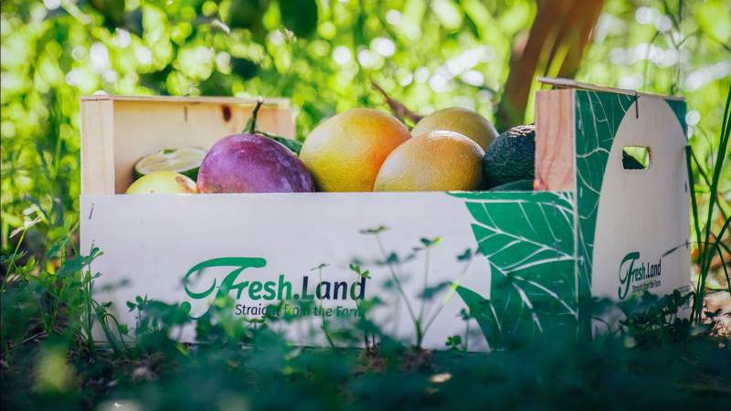Foto: Freshland