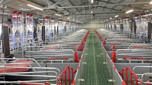 Aco Funki specialiserer sig i udvikling og produktion af staldudstyr til svineproducenter i hele verden. Foto: Aco Funki