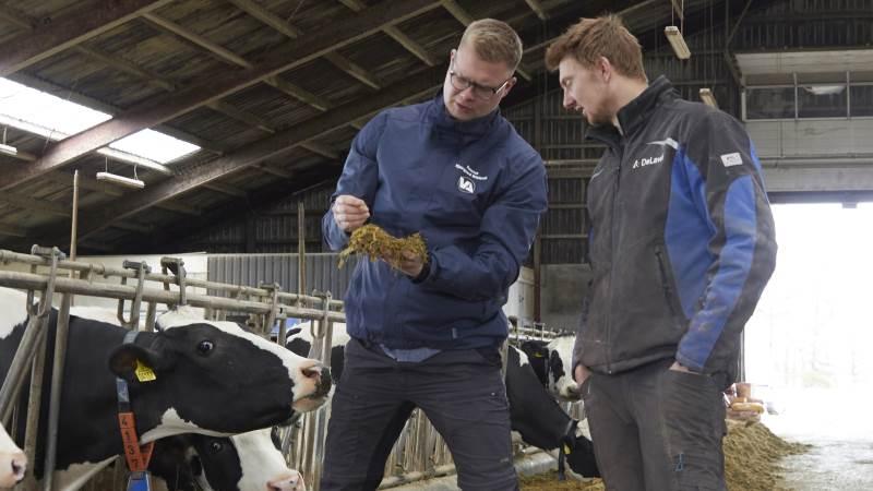 To procent kage i robotblandingen var medvirkende til, at køerne ved Kristian Hindhede Ventzel, Brande, gik fra 2,2 til 3,0 besøg i malkerobotterne i døgnet. Her ses mælkeproducenten sammen med Rasmus Kjærgaard Wielandt, som er produktkonsulent ved Vestjyllands Andel, der har leveret robotblandingen.  Fotos: Tenna Bang