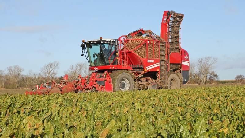 Det kræver i dag dispensation til at køre med flere tunge landbrugsmaskiner på vejene, som for eksempel denne roeoptager fra Grimme.  Arkivfoto: Ulrik Larsen