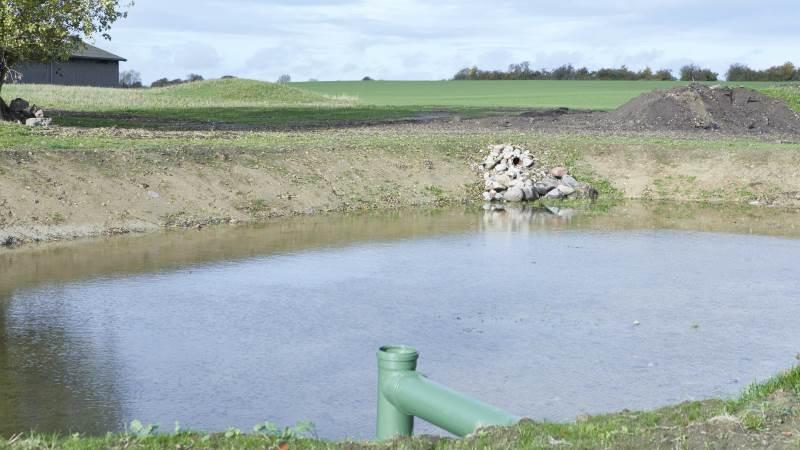 Den 12. og 27. maj er det muligt at besigtige to fynske minivådområder, da Landbrugsstyrelsen, i samarbejde med lokale oplandskonsulenter og de involverede landmænd, holder »Åbent Minivådområde«. Arkivfoto: Erik Hansen