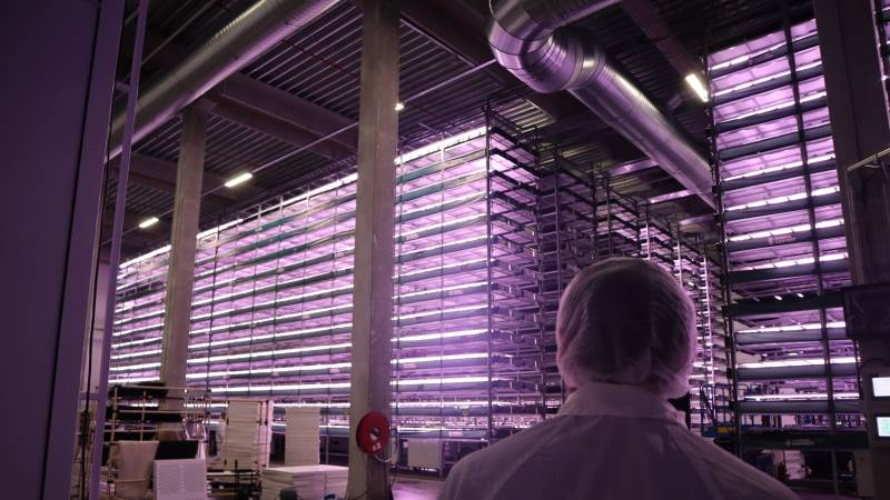 Nordic Harvest flyttede ind i disse lokaler i et industrikvarter i Taastrup i december 2020.