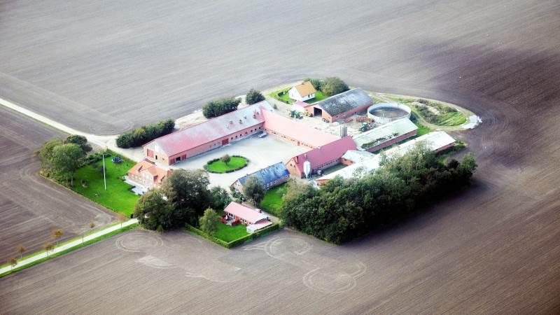 Især for ejendomme med uændrede videreførte 2012-vurderinger er der en vis risiko for, at de efterfølgende vurderinger er forkerte. Foto: Colourbox