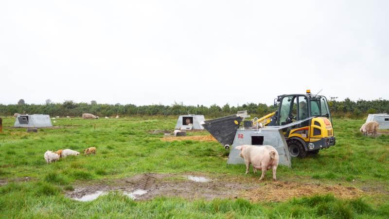 Med regeringens nye landbrugsudspil for klima- og miljø, som kom i denne uge, vil regeringen hæve arealstøtten til økologerne frem mod 2024. Foto: Camilla Bønløkke