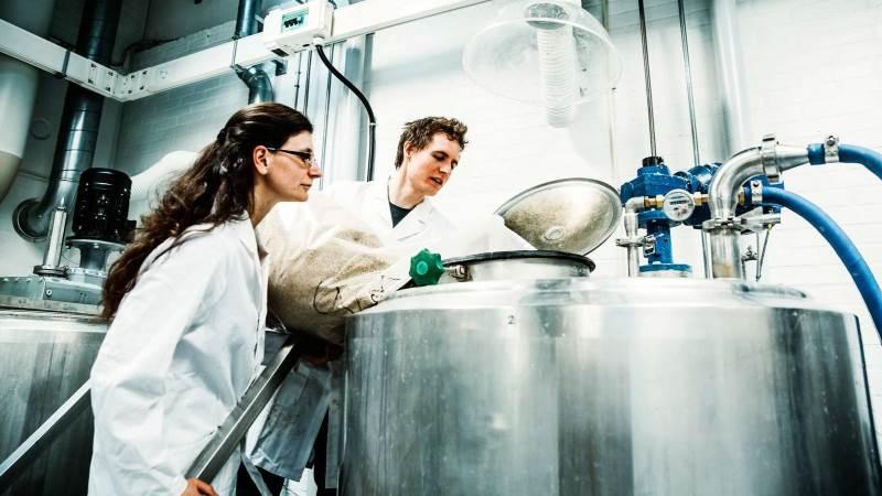 Hos Teknologisk Institut tror man på, at restprodukter fra landbruget som roetoppe ved hjælp af bioraffinering kan være et af svarene på fremtidens bæredygtige fødevarer. Foto: Teknologisk Institut