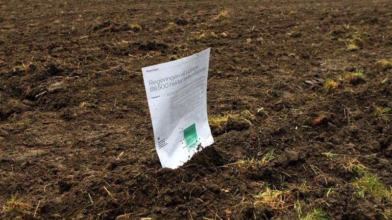 I sidste uge meldte regeringen ud, at den vil udtage 88.500 hektar lavbundsjord. Det er dog en sandhed med modifikationer. Foto: Lasse Ege Pedersen