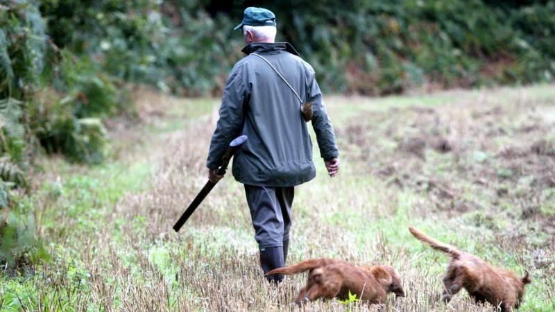 Både klima og biodiversitet skal indgå i landbrugets grønne omstilling mener man blandt andet hos de danske jægere. Foto: Colourbox