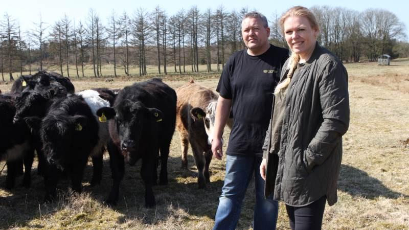 Kai og Anne Nøhr Ringgren vil sælge kød der spiller sammen med den grønne dagsorden og det store fokus på klima og bæredygtighed. Fotos: Christian Carus