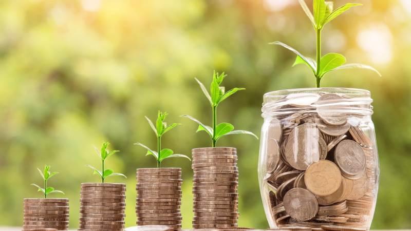 I følge den nyeste rapport fra FN's miljøprogram, UNEP, skal der skrues gevaldigt op for de økonomiske midler til naturen, for at vi skal kunne efterleve de internationale mål i 2030 og 2050. Foto: Pixabay