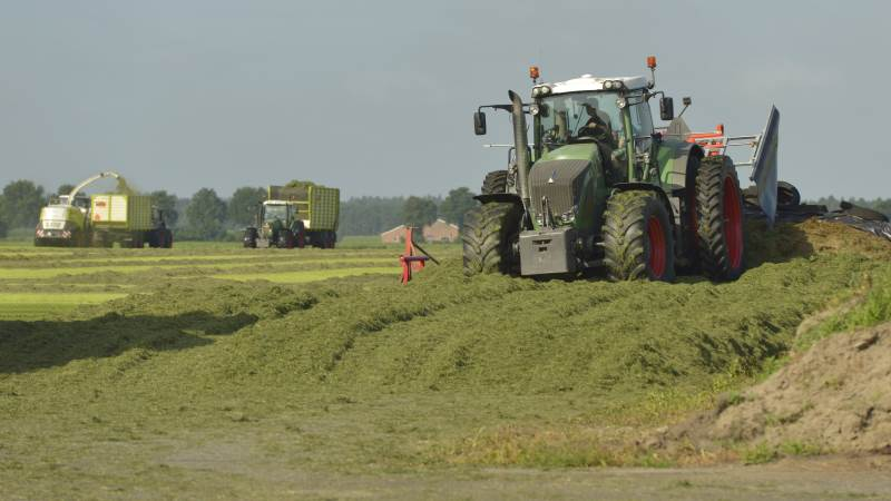 Selvom selvejet og familieejet fortsat er det dominerende, er der kommet flere ejerformer i spil i dansk landbrug i takt med, at bedrifterne er blevet større. Foto: Colourbox