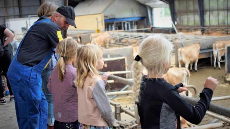 Det er en god ide at se på sin bedrift »med et barns øjne« på forhånd, selv om gårdbesøg som på billedet her typisk foregår i god ro og orden.