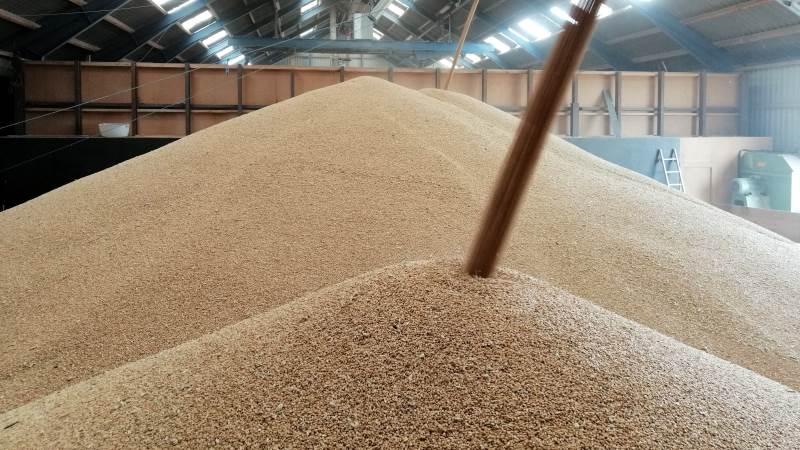 Ifølge den franske landbrugsorganisation, FranceAgriMer, så befinder 76 procent af den franske hvede sig nu i den bedste kvalitetskategori, der går under betegnelsen god til fremragende kvalitet.