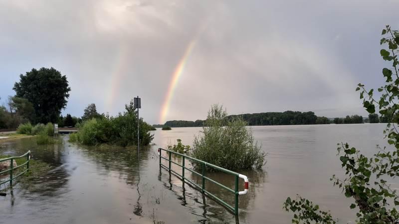 Her oversvømmelse ved Rhinen i Tyskland. Foto: Wikimedia