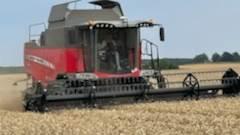 Mens regnen silede ned andre steder på Sjælland, høstede Karsten Jensen mandag eftermiddag Chevignon-hvede med en vandprocent på 14,4 og et - noget skuffende udbytte - på skønsmæssigt 75-76 hkg pr. hektar. Privatfoto