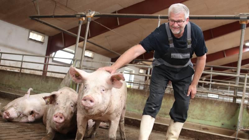 Det kan godt være, Henrik Mortensen er blevet lidt grå i toppen, men han er slet ikke klar til afvikling. Derfor har han taget udfordringen op og går tilbage til full-line produktion og bygger ny stald til 31.000 slagtesvin.