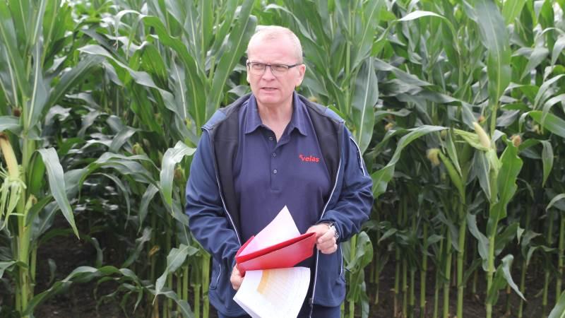 Grovfoderkonsulent Anders B. Christiansen fra Velas bød velkommen i majsmarken til årets fynske GrovfoderTræf og så med tilfredshed på de flotte majsplanter, der stort set har indhentet den sene såning.