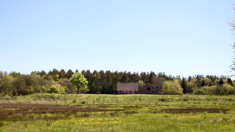 Den foreslåede Vestkystforbindelse skal efter planen gå igennem dette område ved Varde. Arkivfoto.