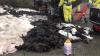 Der er fundet stoffer fra de døde mink under selve minkgravene. Det vil dog ikke påvirke kvaliteten af drikkevandet i området, lyder det fra Miljøstyrelsen. Arkivfoto:  Brian Langballe Kristensen