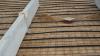 Gyllekølingsslanger i gulvet af den nye stald – gyllekøling får en central rolle i produktion af varme – en varme som både Charlotte Duus Christensen selv, men især naboer gerne skulle få glæde af. Foto: John Ankersen