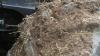 Høstarbejdet blev udfordret af våd og fedtet jord, der fik mejetærskeren til at glide på skråningen.