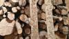 - Det her kan man ikke kalde ordentlig rengøring, siger Ole Vorre om de to stykker træ, der fortsat er fyldt med efterladenskaber fra de fugle, der var i hans besætning, da den blev ramt af højpatogen fugleinfluenza. Fotos: Henning Andersen